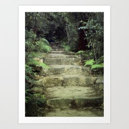 Steps to losing yourself Art Print