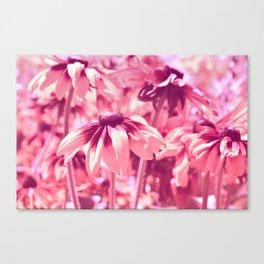 Flower Pink 0144 Canvas Print