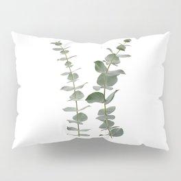 Eucalyptus Branches I Pillow Sham