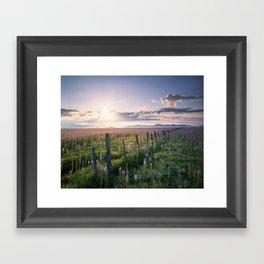 Camas Marsh Sunrise Framed Art Print