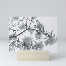 When the Magnolia was in Bloom - Black and white flowers Mini Art Print