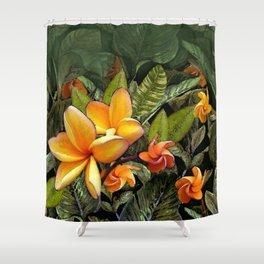Hawaiian Plumeria at First Light Shower Curtain