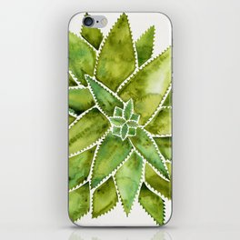 Aloe Vera – Green Palette iPhone Skin