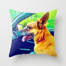 GS Car Ride Throw Pillow