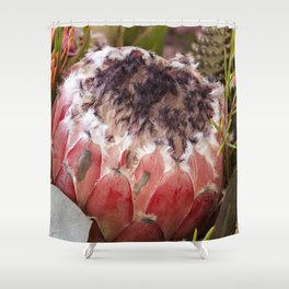 Feather Protea Shower Curtain
