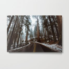 Foggy Forest Road Metal Print
