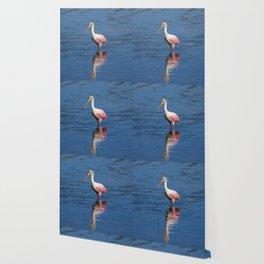Roseate Spoonbill at Ding V Wallpaper