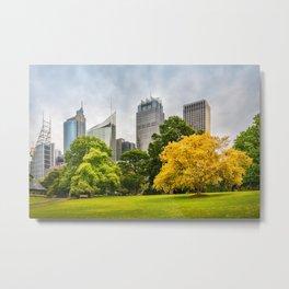 Colorful Trees in the Royal Botanical Garden against Sydney Skyline, Australia. Metal Print