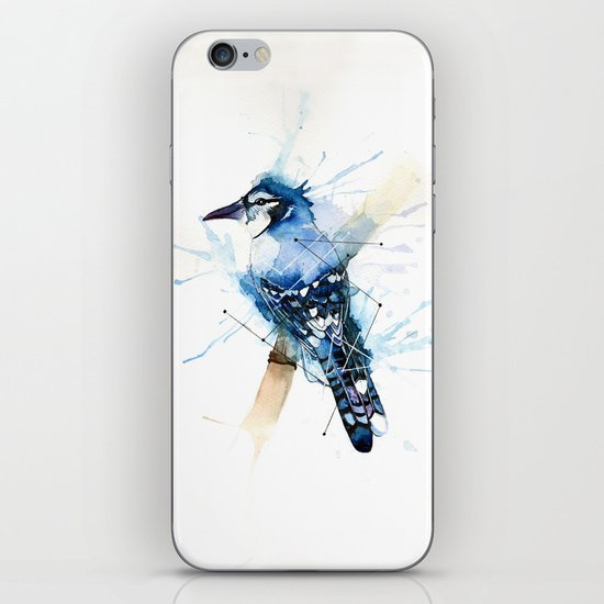 Blue Jay iPhone & iPod Skin