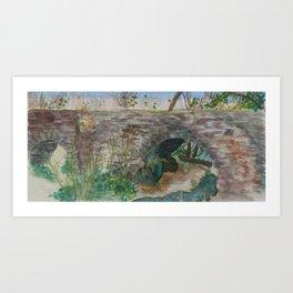 Espada Aqueduct Art Print