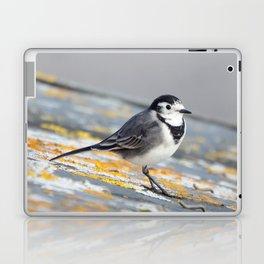Pied Wagtail Laptop & iPad Skin