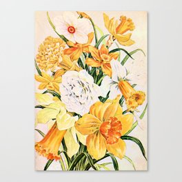 Wordsworth  and the daffodils. Canvas Print