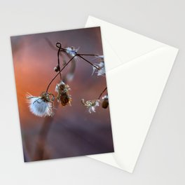 Stops the colors Stationery Cards