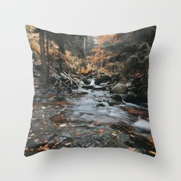 Autumn Creek - Landscape and Nature Photography Throw Pillow