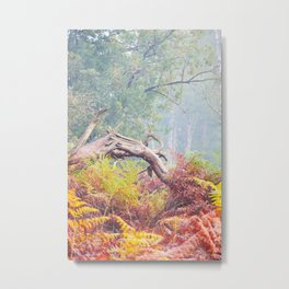 Autumn colored Ferns in forrest | Veluwe, The Netherlands | Fine art nature photography Metal Print