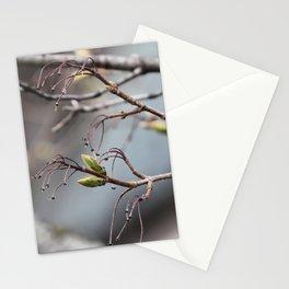 springtime tree buds Stationery Cards
