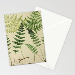 Botanical Ferns Stationery Cards