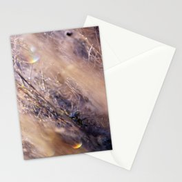 Prisims Stationery Cards
