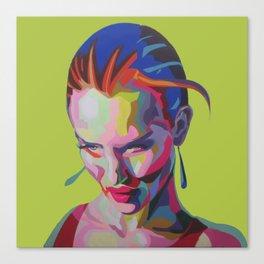 aa Canvas Print