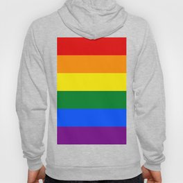 Pride Rainbow Colors Hoody