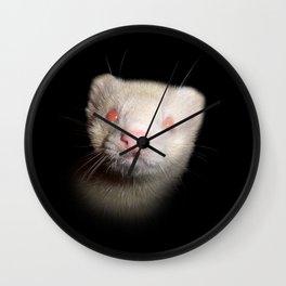 Albino Ferret black background Wall Clock