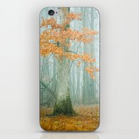 autumn iPhone & iPod Skins featuring Autumn Woods by Olivia Joy StClaire