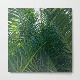 Luxurious Large Tangles Of Exotic Palm Leaves Metal Print