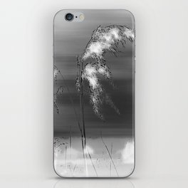 Windblown Reeds iPhone Skin