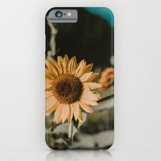 Sunflower Daze iPhone 6s Slim Case