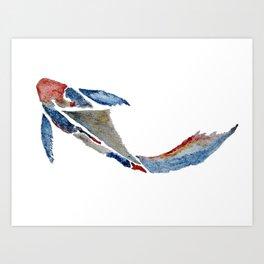 Stylefish Koi Kunstdrucke