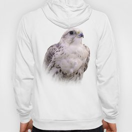 Up Close and Personal with a Stunning Saker Falcon Hoody