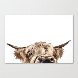 Peeking Highland Cow Canvas Print