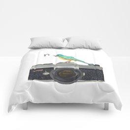 Watch the birdie Comforters