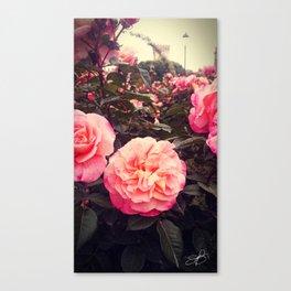 Castle's Flowers Canvas Print