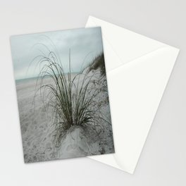 Sea Oats Stationery Cards