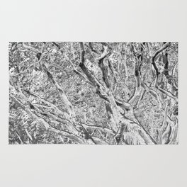 TWISTING BRANCHES Rug