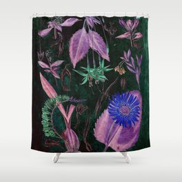 Botanical Study #3, Vintage Botanical Illustration Collage Art Shower Curtain