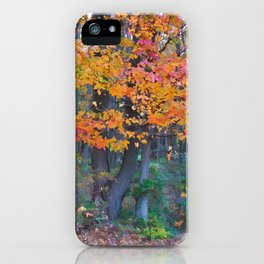 Autumn Trail at Lums iPhone Case