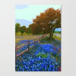 Bluebonnet season in Texas Canvas Print