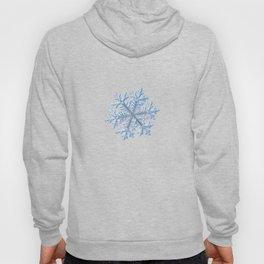 Real snowflake - Hyperion white Hoody
