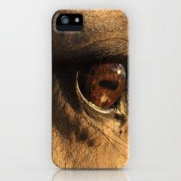 Golden Mare iPhone Case