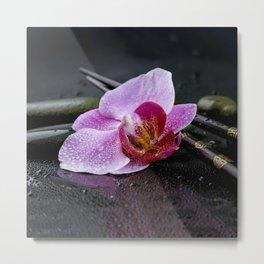 Pink orchid zen black still life Asia Metal Print