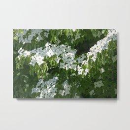 Longwood Gardens - Spring Series 244 Metal Print