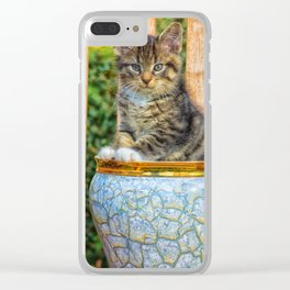 Pot Of Baby Kitten Clear iPhone Case