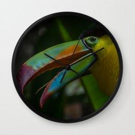 Toucan at Bird Rescue Wall Clock