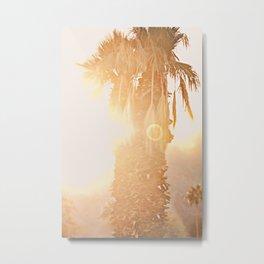 California Fine Art Print Yellow, Peach, Cream La Quinta Palm Tree Photograph - Desert Sunset  Metal Print