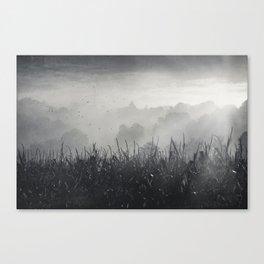 veiled land Canvas Print