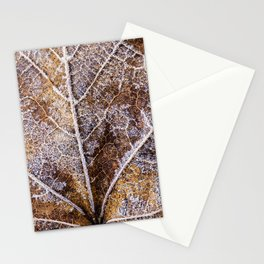 frosty leaf detail Stationery Cards
