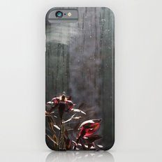 waiting for love Slim Case iPhone 6s