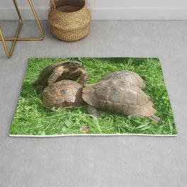 Bullied into Submission - Mating Tortoises Rug